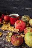 Καυτό φλυτζάνι τσαγιού μια ημέρα φθινοπώρου Επιτραπέζιο υπόβαθρο με τα φύλλα και το α Στοκ εικόνες με δικαίωμα ελεύθερης χρήσης