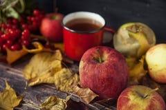 Καυτό φλυτζάνι τσαγιού μια ημέρα φθινοπώρου Επιτραπέζιο υπόβαθρο με τα φύλλα και το α Στοκ Φωτογραφίες