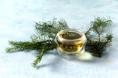Καυτό Χριστουγέννων τσαγιού πεύκο φλυτζανιών γυαλιού σφαιρικό στοκ εικόνες