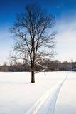 καυτό όχημα για το χιόνι μυρ Στοκ φωτογραφία με δικαίωμα ελεύθερης χρήσης
