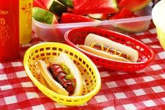 καυτό picnic σκυλιών Στοκ Φωτογραφία