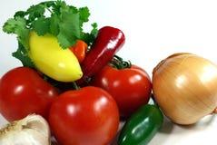 καυτό salsa ingediants Στοκ εικόνα με δικαίωμα ελεύθερης χρήσης