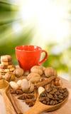 Καφές και καρύδια Στοκ φωτογραφία με δικαίωμα ελεύθερης χρήσης