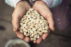 Καφές περγαμηνής διαθέσιμος Στοκ Εικόνα