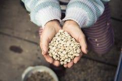 Καφές περγαμηνής διαθέσιμος Στοκ Φωτογραφία