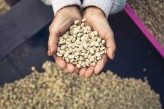 Καφές περγαμηνής διαθέσιμος Στοκ Φωτογραφίες