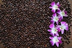 Καφές στην ξύλινη ανασκόπηση Στοκ Εικόνες