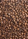 καφές φασολιών ανασκόπησης Στοκ Εικόνες