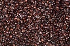 καφές φασολιών ανασκόπησης Στοκ Εικόνα