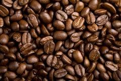 καφές φασολιών ανασκόπησ&eta Στοκ Φωτογραφίες