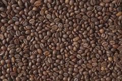 καφές φασολιών που ψήνεται Στοκ Εικόνα