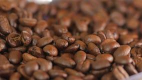 καφές φασολιών που ψήνεται απόθεμα βίντεο