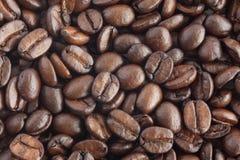 καφές φασολιών που ψήνετ&alpha Στοκ φωτογραφίες με δικαίωμα ελεύθερης χρήσης