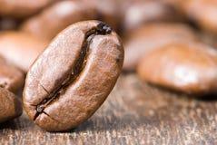 καφές φασολιών που ψήνετ&alpha Στοκ Εικόνες