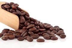 καφές φασολιών Στοκ εικόνες με δικαίωμα ελεύθερης χρήσης