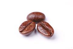 καφές φασολιών Στοκ Εικόνες