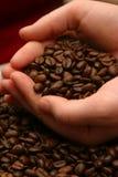 καφές φασολιών aromoa Στοκ φωτογραφίες με δικαίωμα ελεύθερης χρήσης