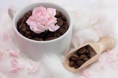 καφές φασολιών ευώδης Στοκ εικόνα με δικαίωμα ελεύθερης χρήσης