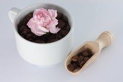 καφές φασολιών ευώδης Στοκ φωτογραφία με δικαίωμα ελεύθερης χρήσης