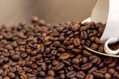 καφές φασολιών που ανατρέ& στοκ φωτογραφία με δικαίωμα ελεύθερης χρήσης