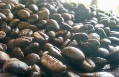 καφές φασολιών που ψήνεται Στοκ Φωτογραφίες