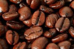 καφές φασολιών που ψήνεται Στοκ φωτογραφία με δικαίωμα ελεύθερης χρήσης
