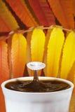 Καφές φθινοπώρου με τον παφλασμό του γάλακτος Στοκ εικόνα με δικαίωμα ελεύθερης χρήσης