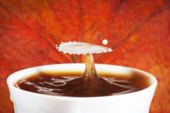 Καφές φθινοπώρου με τον παφλασμό του γάλακτος Στοκ Εικόνες