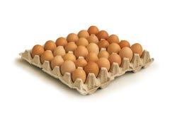 καφετής δίσκος αυγών χαρ& στοκ φωτογραφία