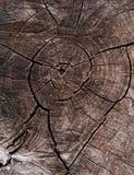 καφετής ξύλινος ανασκόπησης Στοκ Φωτογραφίες