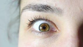 Καφετής-πράσινο μάτι ενός νέου όμορφου κοριτσιού Το κορίτσι εξετάζει τη κάμερα και αναβοσβήνει τα μάτια της φιλμ μικρού μήκους