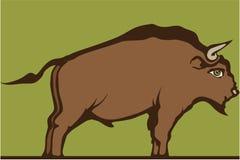 καφετής ταύρος απεικόνιση αποθεμάτων