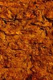 καφετής τοίχος πετρών Στοκ φωτογραφίες με δικαίωμα ελεύθερης χρήσης