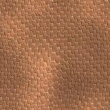 καφετί άνευ ραφής δέρμα σαυρών διανυσματική απεικόνιση