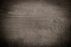 καφετί δάσος σύστασης σκιών ανασκόπησης Στοκ εικόνα με δικαίωμα ελεύθερης χρήσης
