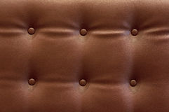καφετί δέρμα σχεδίου ανασκόπησής σας Στοκ Φωτογραφίες