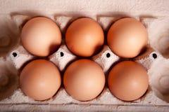 Καφετί αυγό έξι σε έναν δίσκο Στοκ φωτογραφία με δικαίωμα ελεύθερης χρήσης