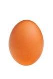 καφετί αυγό Στοκ φωτογραφία με δικαίωμα ελεύθερης χρήσης