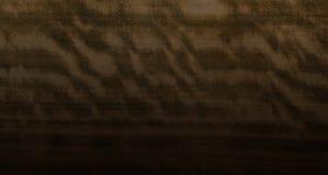 καφετί δάσος σύστασης σκιών ανασκόπησης Στοκ φωτογραφίες με δικαίωμα ελεύθερης χρήσης