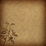 Καφετί εκλεκτής ποιότητας floral έγγραφο με ένα μοτίβο αχλαδιών Στοκ Φωτογραφίες
