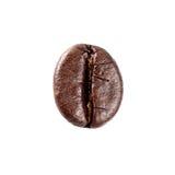 Καφετί ενιαίο φασόλι καφέ Στοκ εικόνα με δικαίωμα ελεύθερης χρήσης