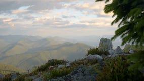 καφετί ηλιοβασίλεμα εμπλοκών ουρανού βουνών τοπίων χλόης λουλουδιών βραδιού ανασκόπησης snowdrop φιλμ μικρού μήκους
