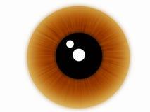 καφετί μάτι Στοκ φωτογραφία με δικαίωμα ελεύθερης χρήσης