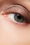 Καφετί μάτι Makeup Σύνθεση ματιών Το εκλεκτής ποιότητας ύφος αποτελεί Στοκ Φωτογραφίες