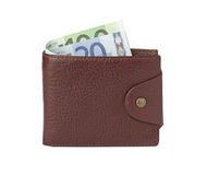 καφετί πορτοφόλι χρημάτων &delt Στοκ Εικόνα