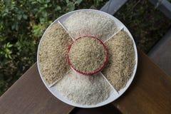 Καφετί ρύζι και jasmine ρύζι στο πιάτο Στοκ εικόνες με δικαίωμα ελεύθερης χρήσης
