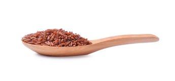καφετί ρύζι σιταριών άψητο Στοκ εικόνα με δικαίωμα ελεύθερης χρήσης