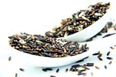 Καφετί ρύζι στο άσπρο υπόβαθρο κουταλιών Στοκ Εικόνες