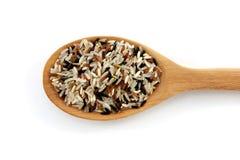 Καφετί ρύζι στο κουτάλι που απομονώνεται Στοκ εικόνα με δικαίωμα ελεύθερης χρήσης