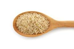 Καφετί ρύζι στο κουτάλι που απομονώνεται Στοκ Φωτογραφίες